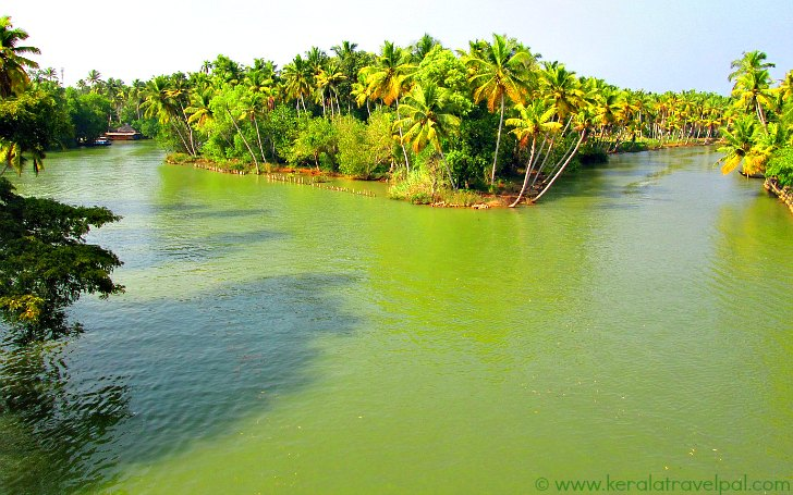 poovar_island_and_backwater